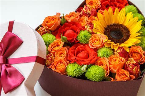 Dzimšanas Dienā Ziedi - Foto Kolekcija
