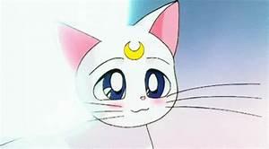 anime blush GIFs Search | Find, Make & Share Gfycat GIFs