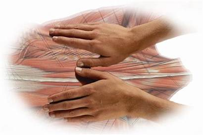 Massage Muscle Therapy Tissue Inspire Deep Regularly