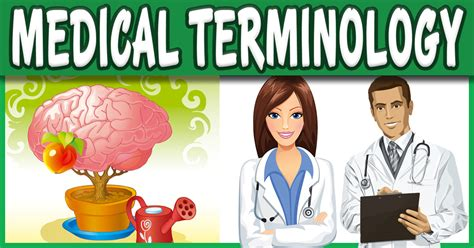 Medical Terminology Course Dictionary Words List  Pre Med. Double Glazing Brighton Uvu Graduate Programs. Texas Gun Trader Dallas Cruise Venice To Rome. Information Technology Goals. Sonography Schools In Orlando Fl. Teamviewer Remote Access Used Trucks In Dubai. Retirement Communities San Diego Ca. Phd Clinical Psychology California. Home Phone And Internet Companies
