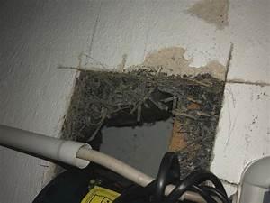 Vinyl Asbest Platten : hwl platten heraklith mit asbest als bindemittel ~ A.2002-acura-tl-radio.info Haus und Dekorationen