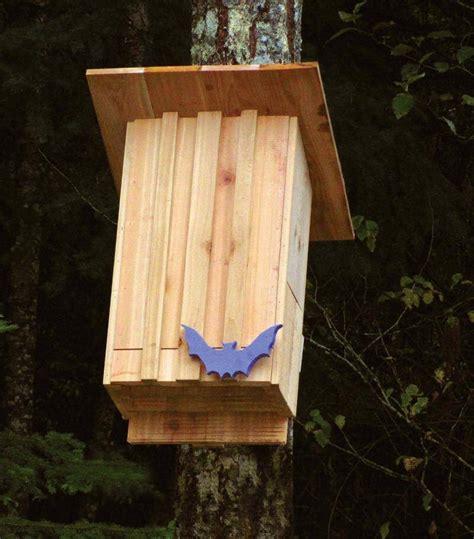 bat house plans insteading