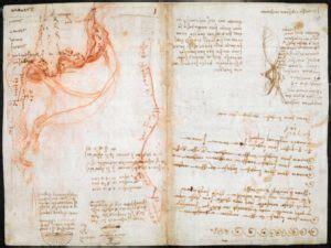 Top 7 Interesting Facts About Leonardo Da Vinci - Discover ...