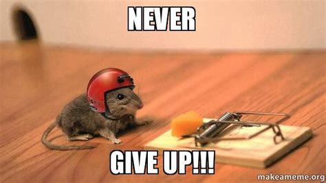 Never Give Up Meme - accepting my limits tomo