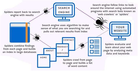 Website Search Engine by Search Engine Infographic