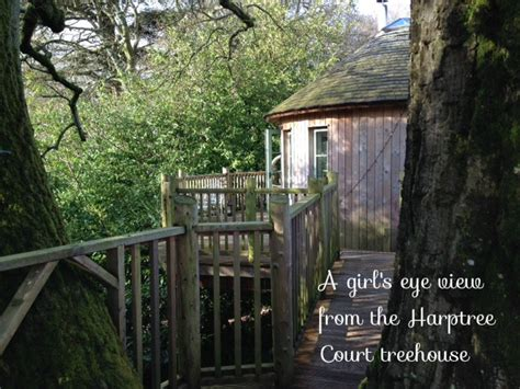harptree court treehouse  girls eye view