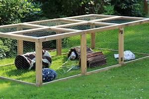 auslauf und freilauf meerschweinchenwiese With französischer balkon mit absperrung für hunde im garten