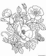Coloring Flowers Spring Pages Printable Prints sketch template