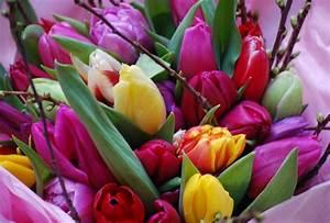 Bouquet De Printemps : magnifique bouquet color de tulipes pour f ter le printemps paris c t jardin ~ Melissatoandfro.com Idées de Décoration