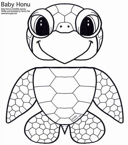 Puppet Paper Bag Template Turtle 74kb Resolution