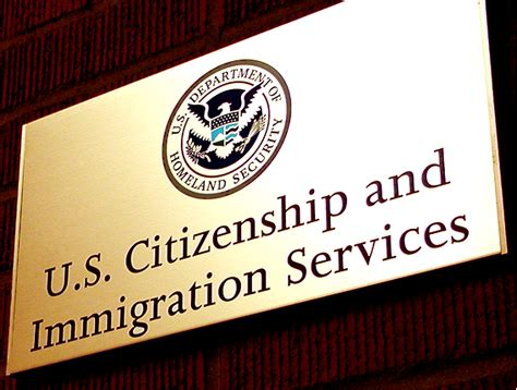 new program allows some undocumented immigrants to legally stay in us the feminist wire