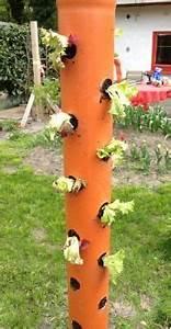 Erdbeeren Im Rohr Bauanleitung : 1000 images about garten und pflanzen on pinterest garten herb spiral and oder ~ Orissabook.com Haus und Dekorationen