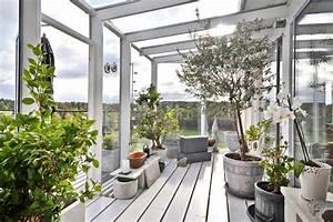 wintergarten gestaltungsideen pflanzen olivenbaum With whirlpool garten mit sonnenschirm balkon beige