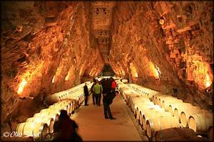 Caves A Vin : cave vin ce qu 39 il faut savoir avant d 39 acheter ~ Melissatoandfro.com Idées de Décoration