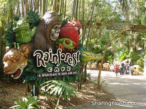 rainforest cafe sign  disney world pictures