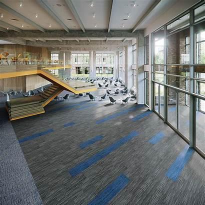 Carpet Commercial Tile Modular Inertia Entryway Systems