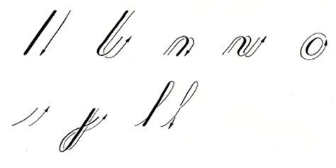 Copperplate Minuscules  The Basic Strokes Scribblers