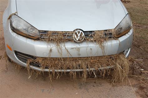rental cars  short supply  thanksgiving   sandy