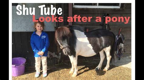 pony shetland tube