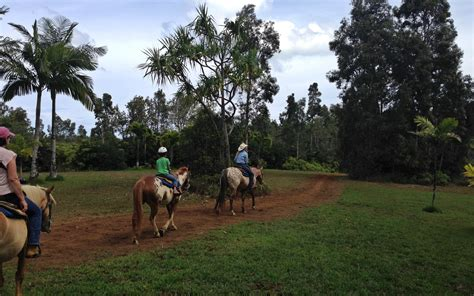 kauai horseback riding rides trail