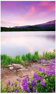 3d nature wallpaper hd 1080p free download_ HD Widescreen ...