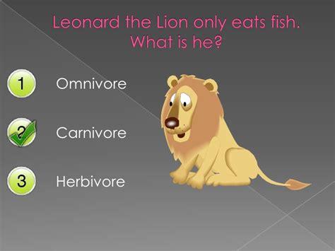 mouse omnivores herbivores carnivores mischief animals