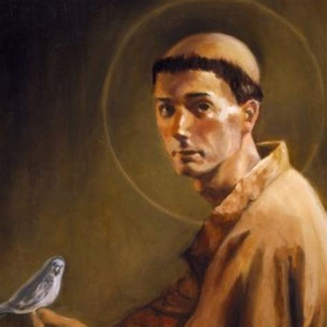 44 best images about francis of assisi patron