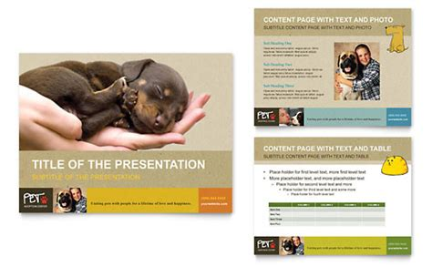 animal shelter pet adoption newsletter template word