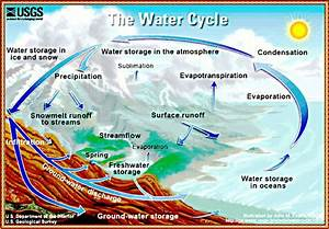 Hoopman U0026 39 S Science  Grade 8 Week 11  The Water Cycle