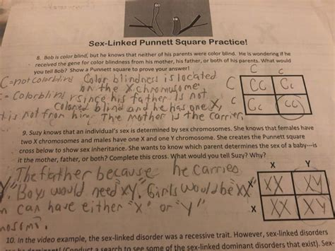 Solved Sex Linked Punnett Square Practice 8 Bob Is Colo