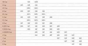 Bra Size Chart  U2013 Thirdlove