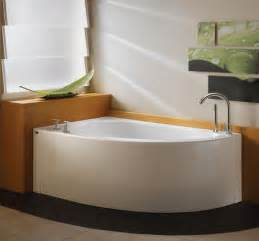 corner tub bathroom ideas for the home on aquarium fish tanks and cool beds