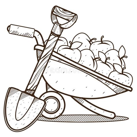 apples drawing stock illustrations  apples drawing