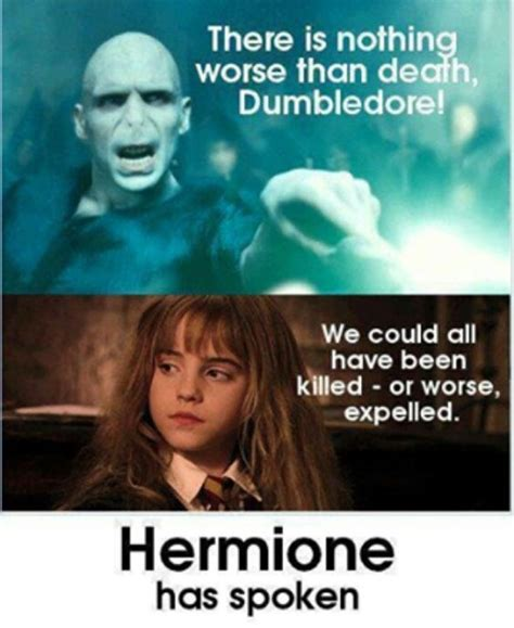 Hermione Meme - 16 hermione memes only true harry potter fans will appreciate