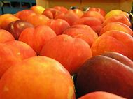 Peaches Fruit Wallpaper