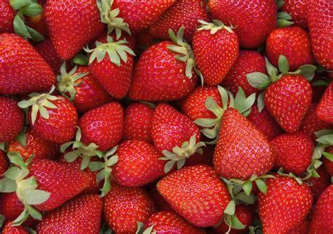 alimentazione per chi soffre di colite le fragole alleate della salute dell intestino