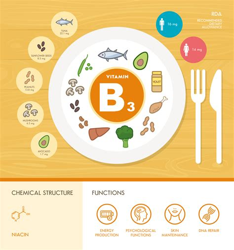 Vitamin B3 Niacin Benefits Deficiencies Foods