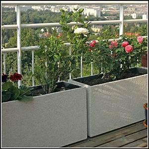 Pflanzgef sse f r terrasse terrasse house und dekor for Pflanzgefäße terrasse