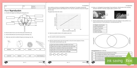 plant reproduction worksheet ks biology science resources