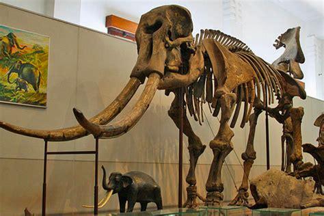 wisata edukasi  museum geologi bandung