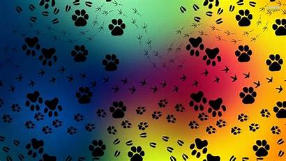 Paw Prints Pattern Dog Paws Backgrounds Wallpapers