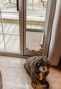 how to keep the cat from using the dog door diy dog door With dog doors that keep other animals out