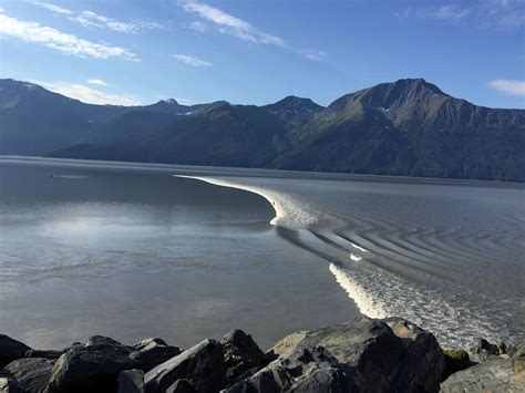 pillow top surfing the turnagain arm bore tide alaska thrill on