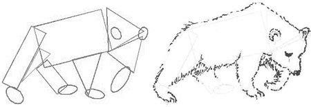 draw animals draw step  step