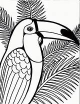Coloring Pages Bird Parrot Tree Printable Sheet Birds Coconut Detailed Sheets Print Colorier Dessin Drawings Coloriage Toucam Animals Cute Penguin sketch template