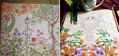 artist johanna basford creates coloring books  adults