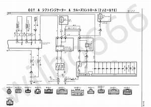 Dictator Engine Management Wiring Diagram
