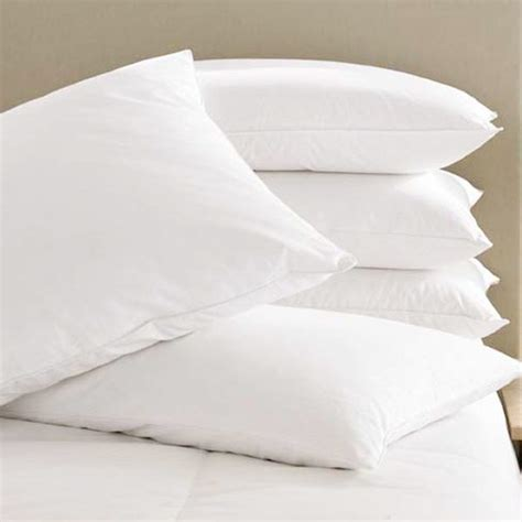 goose feather pillows goose feather and pillows