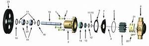 Water Pump Won U0026 39 T Prime