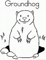 Groundhog Coloring Woodchuck Animal Popular Coloringhome sketch template